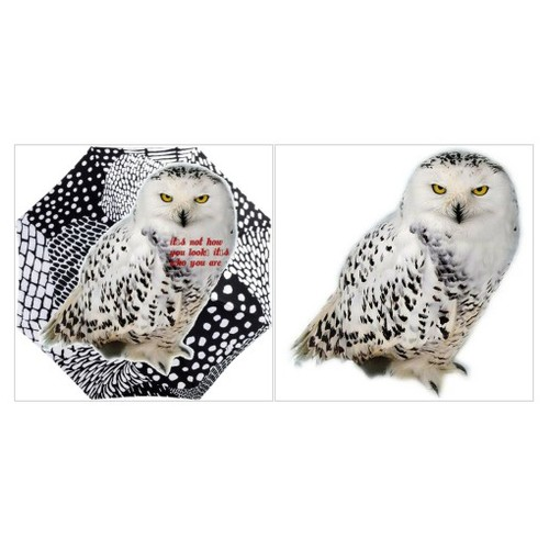 #artexpression #artcreativity #artset #owl #polyvoreeditorial #setswith2items #loveit #polyvore #dots @etsyRT  #socialselling #PromoteStore #PictureVideo @SharePicVideo