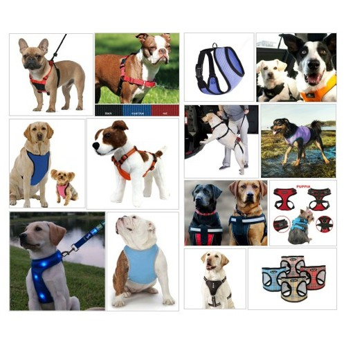 Dog Harness | @keepdoggiesafe .com #shopify  #socialselling #PromoteStore #PictureVideo @SharePicVideo