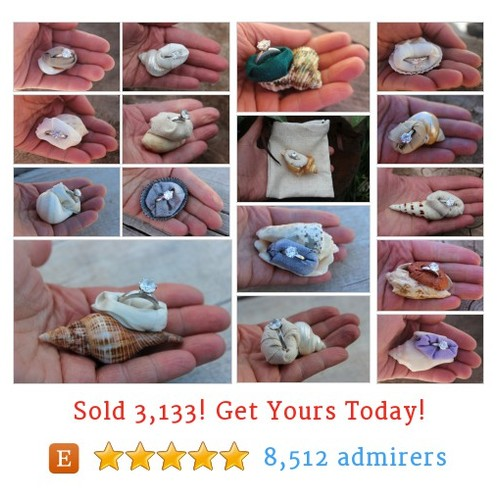 Ring Boxes - Shells Etsy shop #etsy @mountainursus  #etsy #PromoteEtsy #PictureVideo @SharePicVideo