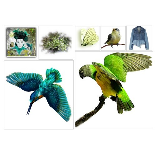 #ArtandFun #artset #artexpression #artcreativity #artcollage #polyvoreeditorial #spring #BirdsNButterflies #march #art #animals #polyvore #contestentry  #socialselling #PromoteStore #PictureVideo @SharePicVideo
