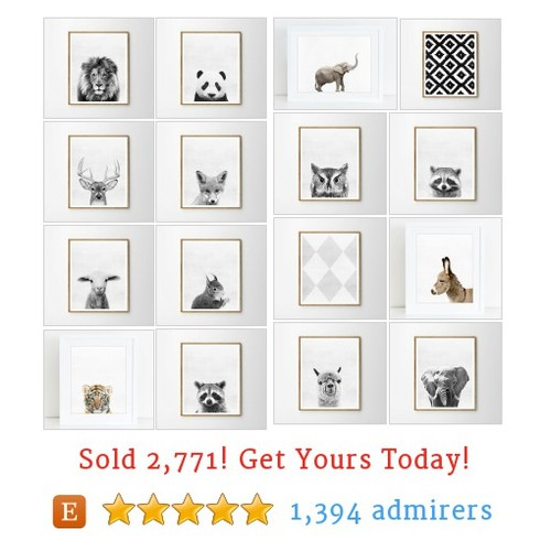 ANIMALS Etsy shop #animal #etsy @wallart2decor  #etsy #PromoteEtsy #PictureVideo @SharePicVideo