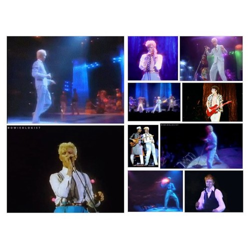 DAVID BOWIE AND THE SERIOUS MOON LIGHT TOUR #socialselling #PromoteStore #PictureVideo @SharePicVideo
