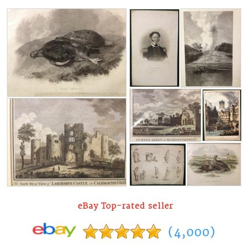 Antique Engravings Items in antiquesandcollectables4u shop . #ebay @collectablebits  #ebay #PromoteEbay #PictureVideo @SharePicVideo