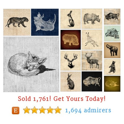 Wild Animals Etsy shop #wildanimal #etsy @vintageretroatq  #etsy #PromoteEtsy #PictureVideo @SharePicVideo