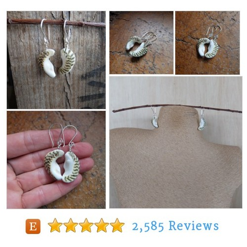 Ocean moon - shell earrings - natural #etsy @naturesartmelb  #etsy #PromoteEtsy #PictureVideo @SharePicVideo