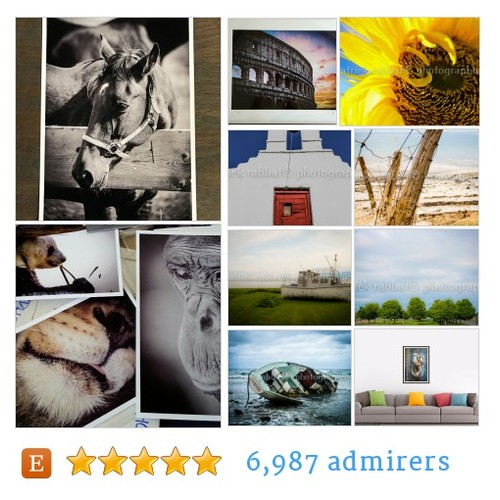 BLUE Photography #bestofetsy #artlover #IntegrityTT @MDFDRetweets @EarthRT @EtsyRT #etsy #PromoteEtsy #PictureVideo @SharePicVideo
