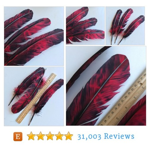 TURKEY QUILL, Black and red, 4 pieces / Q - #etsy @hello_kimonos  #etsy #PromoteEtsy #PictureVideo @SharePicVideo