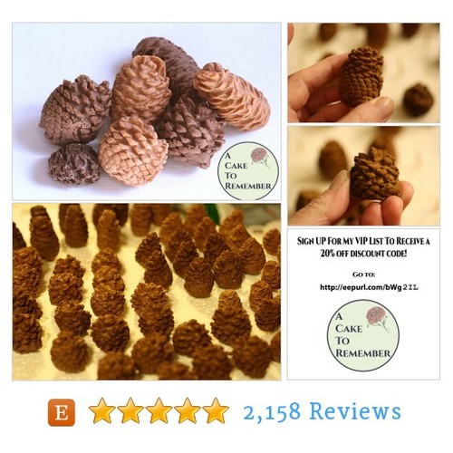 10 Gumpaste pine cones for cake decorating, #etsy @acaketoremember  #etsy #PromoteEtsy #PictureVideo @SharePicVideo